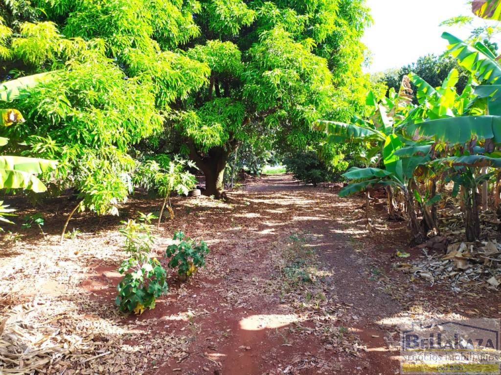Chácara para venda no Gleba Patrimonio Maringa em Maringa com 42.592m² por R$ 4.500.000,00