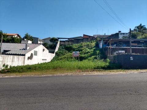 Terreno para venda no Centro em Rio Negro com 725m² por R$ 420.000,00